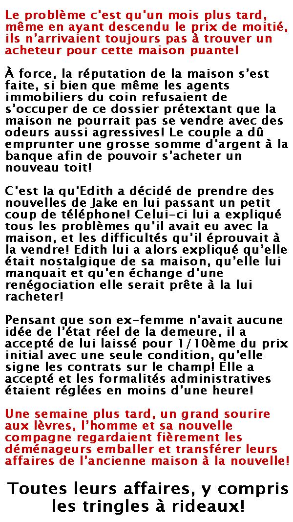 rideaux-2
