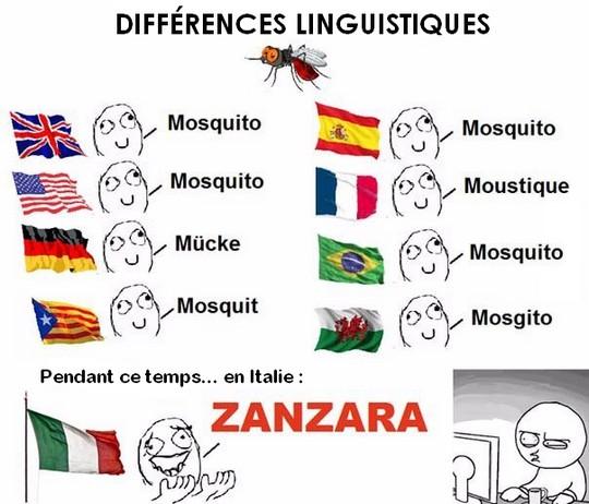 langue 276