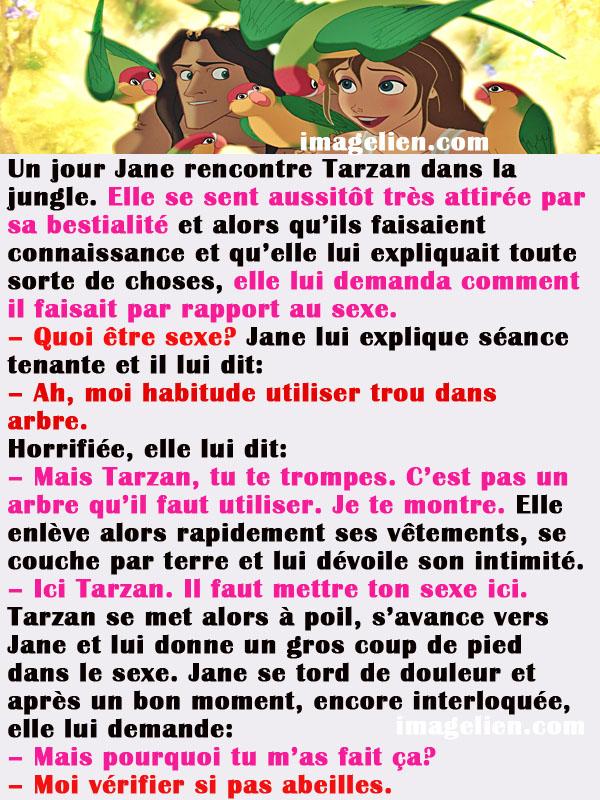 histoire tarzan 21